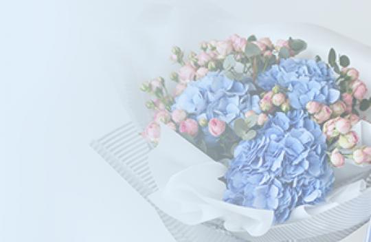 Visos gėlės