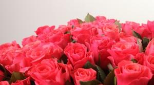Rožių puokštės