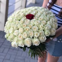 """Puokštė rožių 101vnt """"Amanda"""""""